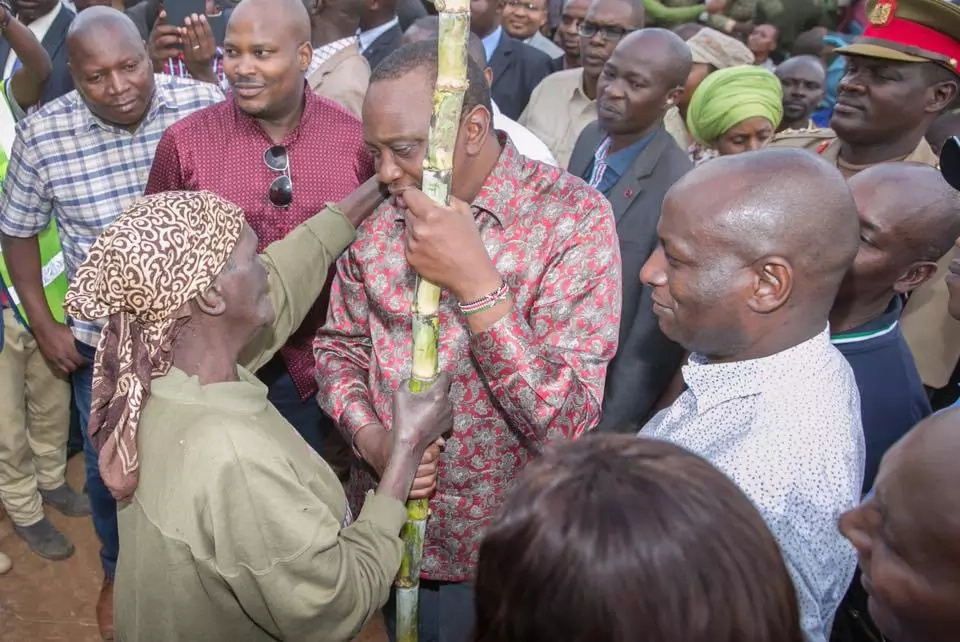 Poll reveals Uhuru Kenyatta is a favourite in 2017