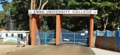 Courses Offered at Embu University College: Why You Should Apply Here