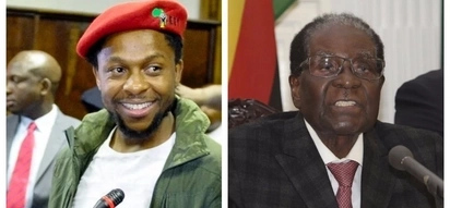 EFF calls on Zimbabwe army to release Mugabe so he can retire in South Africa