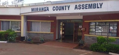 Shame as Murang'a MCAs engage in ugly fist fight