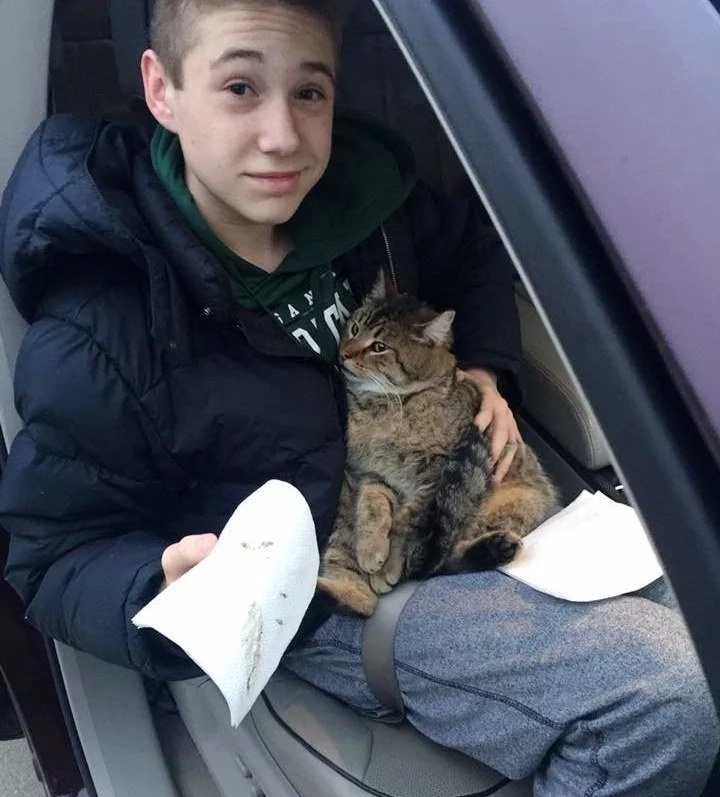 14-Year-Old Kid Risks His Life To Save Cat Hanging Over The Bridge, But It's Not The End Of It...