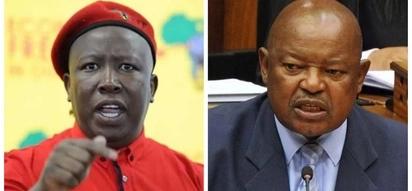 Has Lekota lost his terror factor? Julius Malema thinks so