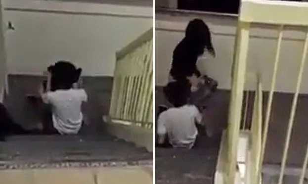 Two Singaporean Teenagers Caught Having Sex Near A Staircase