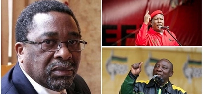 'ANC and little son EFF using land to lure back voters' – Moeletsi Mbeki