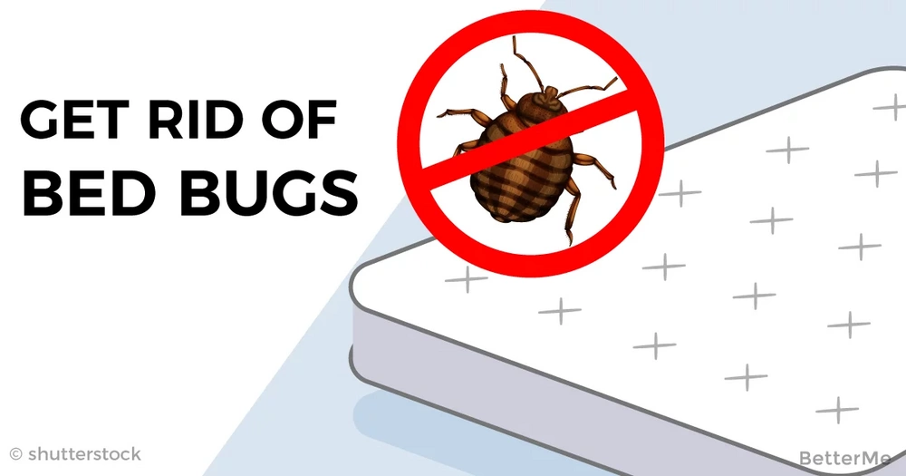 how to get rid of bed bugs permanently naturally