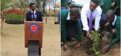 Alfred Mutua bans tree harvesting for 1,095 days, appeals for tree seedlings