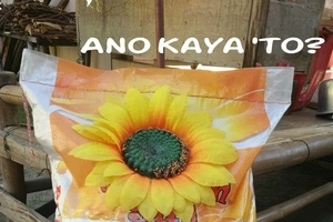 Pinoy gets practical with his Valentine's gift and gives this to his girlfriend!
