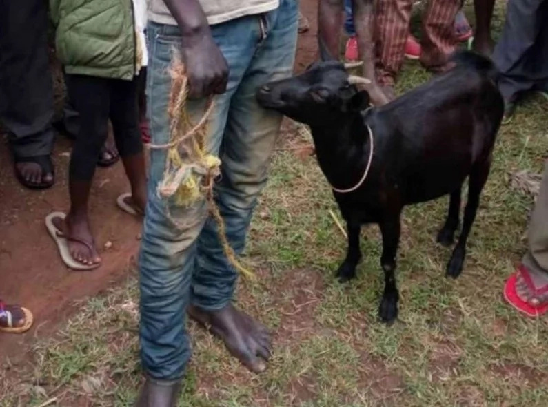 Man Caught Raping His Neighbor's Goat - The Reason Is Even Stranger!