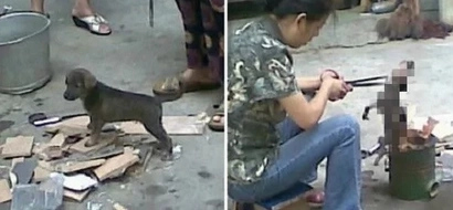 Chinese woman horrifies netizens by roasting live puppy over fire