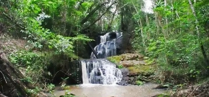 A guide to Karura forest fun filled activities