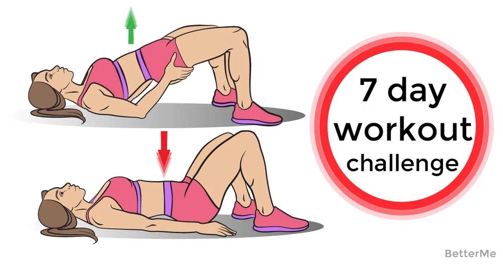 Whole body workout plan