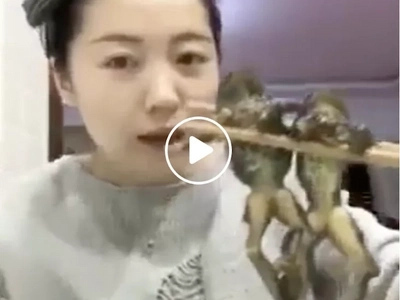 Brave Asian beauty eats frogs will make you cringe!