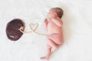 A Lotus Birth Gave This Mom The Most Amazing New Baby Photo