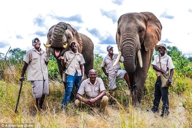 Kufandada (centre) was killed by Mbanje the elephant (left). Photo: Adventure Zone
