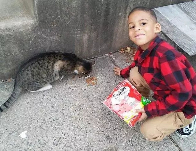 Shon likes to rescue cats. Photo: The Dodo