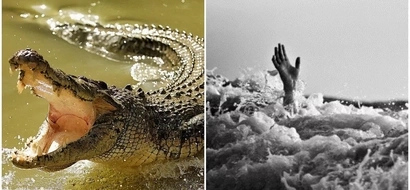 Zimbabwean pastor eaten ALIVE by crocodiles while demonstrating to his church how Jesus walked on water