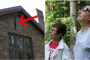 This couple was living in this house for many years and had no idea that they were not alone (photos)