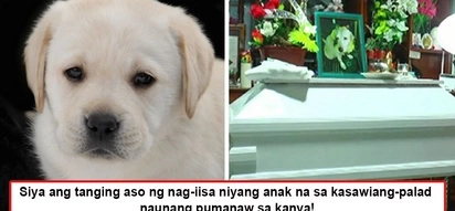Tinuring na tao hanggang kamatayan! Pet owner buries dog like any human being, embalmed and with a coffin