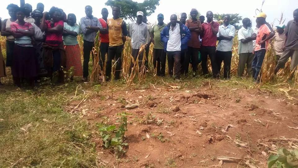 Photos: Busia man kills 22-year-old girlfriend, buries her behind kitchen