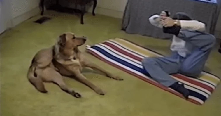 Watch this cute video of a dog doing yoga with its owner!