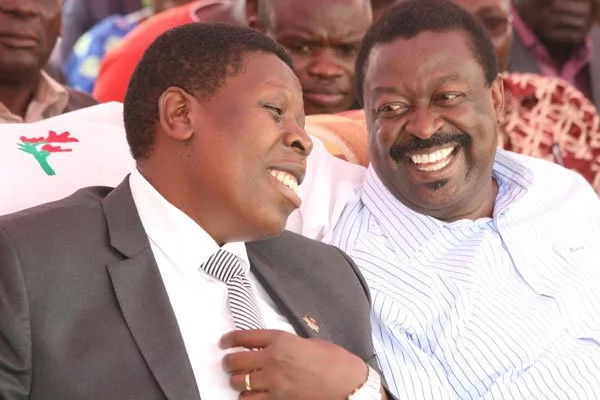 Swarm of bees attack Eugene Wamalwa in West Pokot