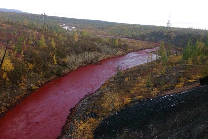 Russian river turns bloody red, and it's horrendous