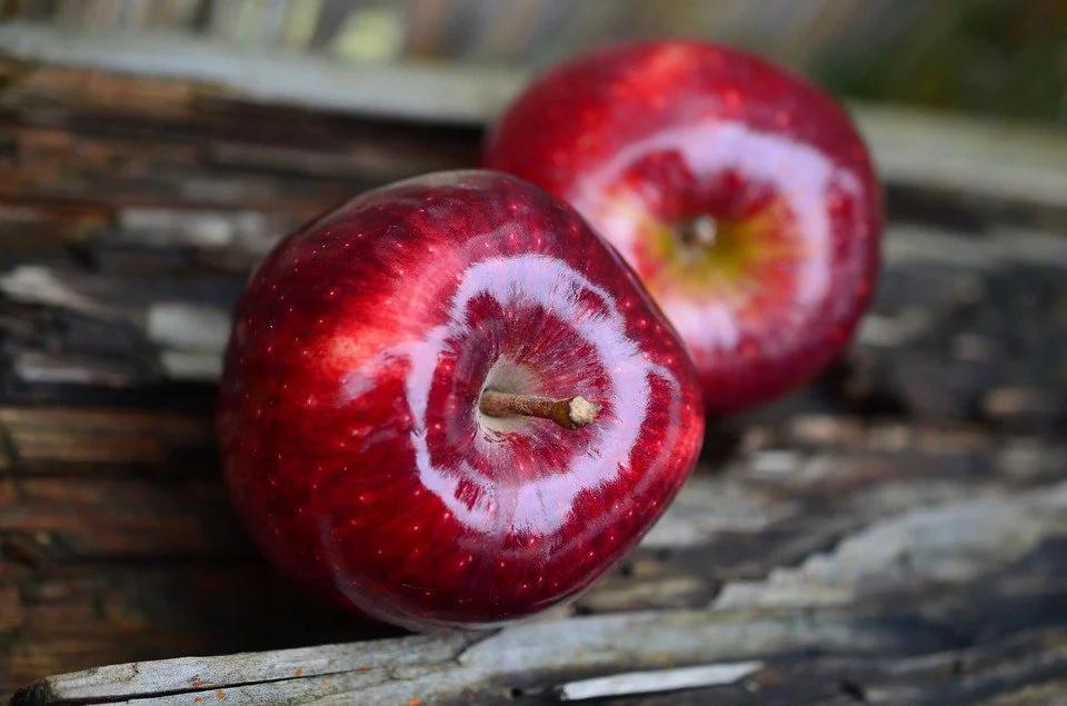 ¿Semillas de Manzana, anticancerígenas?
