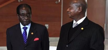 Museveni akemea mapinduzi dhidi ya Mugabe