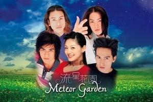 LOOK: Meteor Garden casts then and now
