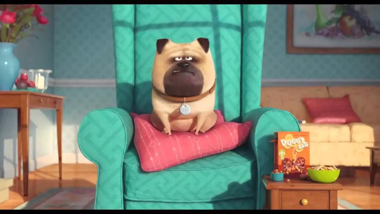 Récord en taquillas de La vida secreta de tus mascotas