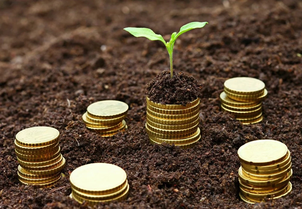 effect of microfinance services on small Effects of microfinance institutions' products on financial performance of small and studying on the relationship between microfinance services and.