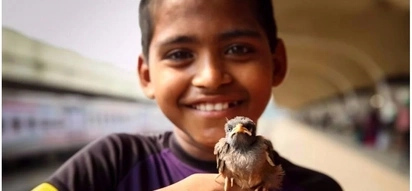 People have no time for love! Orphaned boy shares his life on the streets and love for his bird