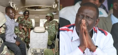 Senator sensationally claims DP Ruto has armed one community with guns to kill another