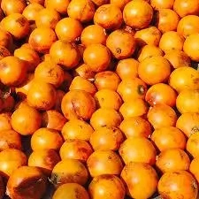 Health Benefits of African Star Apple