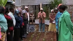 How To Start An Agricultural Training Workshop In Nigeria