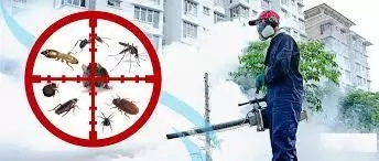 How To Start A Fumigation Business In Nigeria