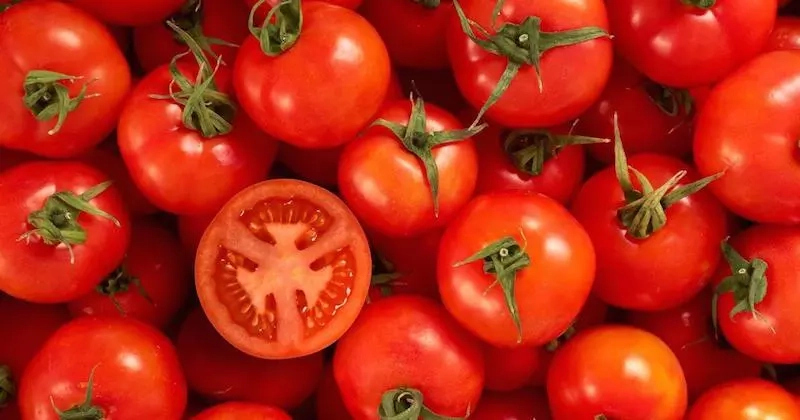 Rate of Tomatoes Consumption in Nigeria