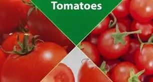 Top 10 Tomato Producing States in Nigeria
