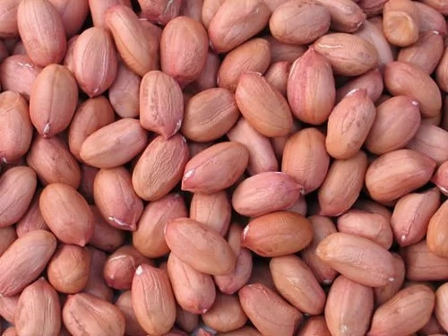 How much is a Bag of Groundnut in Nigeria?