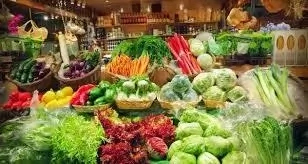 Raw Food Stuff Business Plan in Nigeria