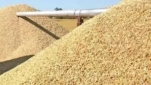 Nigerian Rice Industry; Facts, Analysis, Challenges and Prospect