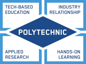 The Importance of Polytechnic Education in Nigeria (do not publish)