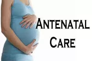 Guidelines for Pregnancy or Antenatal Care