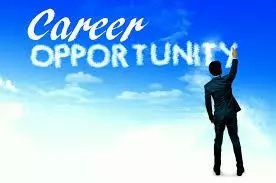 Career opportunities in Business Studies