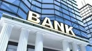 The Role Of Financial Institutions In A Developing Economy