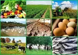 Employment Opportunities in Agriculture in Nigeria