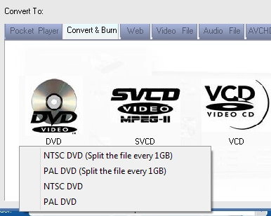 Video format supported by DVD player USB
