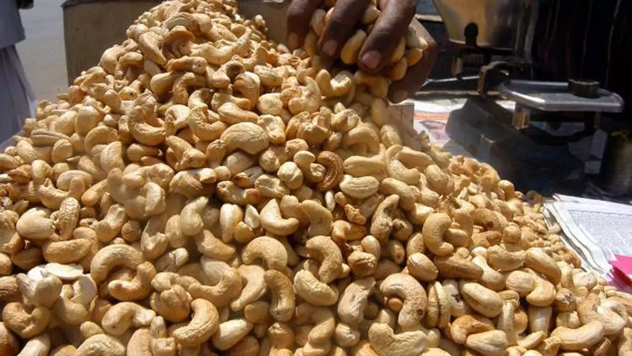 Strategies To Boost The Production Of Cashew Nuts In Nigeria