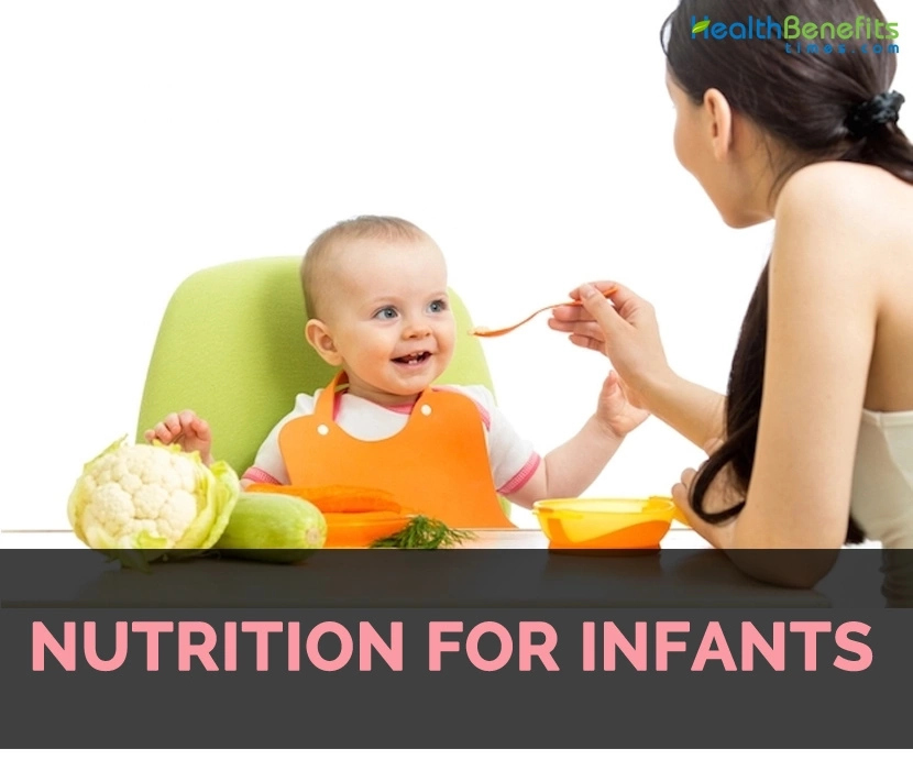 Dietary Needs Of Infants