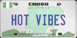 How to Check Plate Number Owner in Nigeria (do not publish)